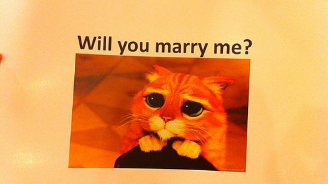 Cheesy or Romantic? Man Uses Internet Memes for a Marriage Proposal [Video]