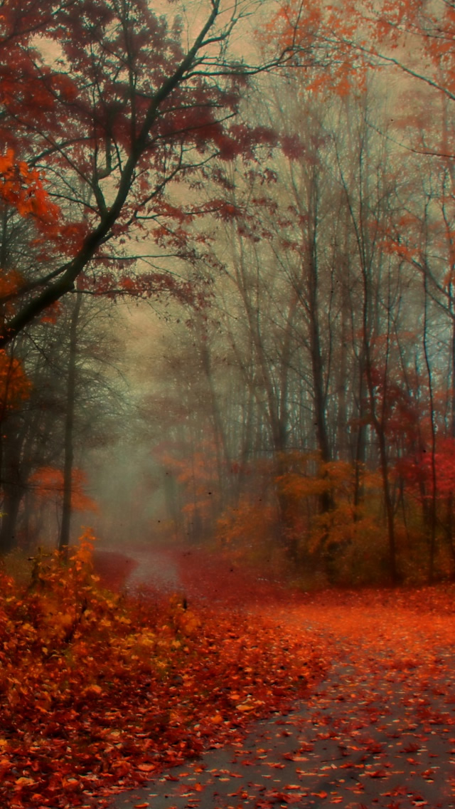 fall wallpaper iphone awesome autumn wallpapers for your iphone hd the nology 10575